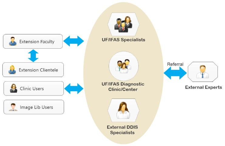 Figure 2. Collaboration among DDIS users and diagnostic clinics or specialists.