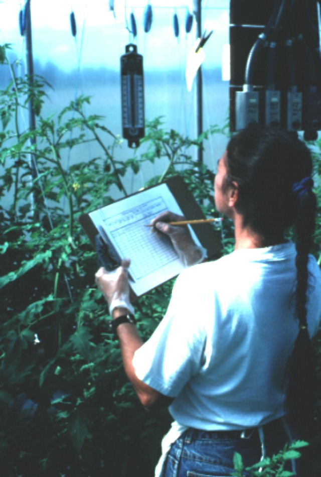 Figure 1.Maintaining accurate records is important for successful and profitable greenhouse operations.
