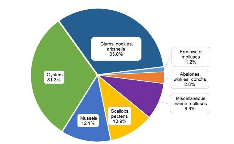 Figure 1.The percentage of aquaculture production (15.2 million metric tonnes) for the major molluscan species groups in 2012 worldwide.