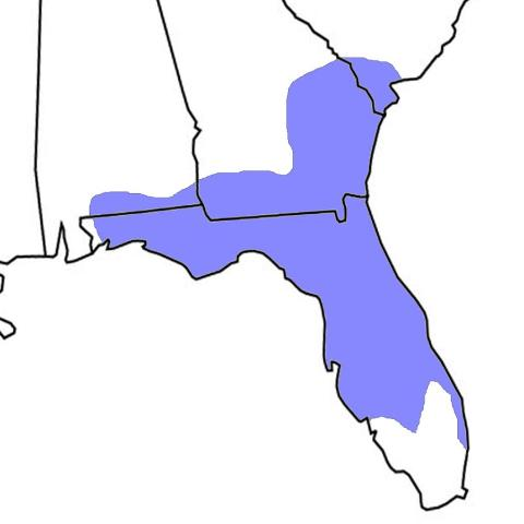 Figure 7. Distribution of Florida pinesnakes in the southeastern United States.