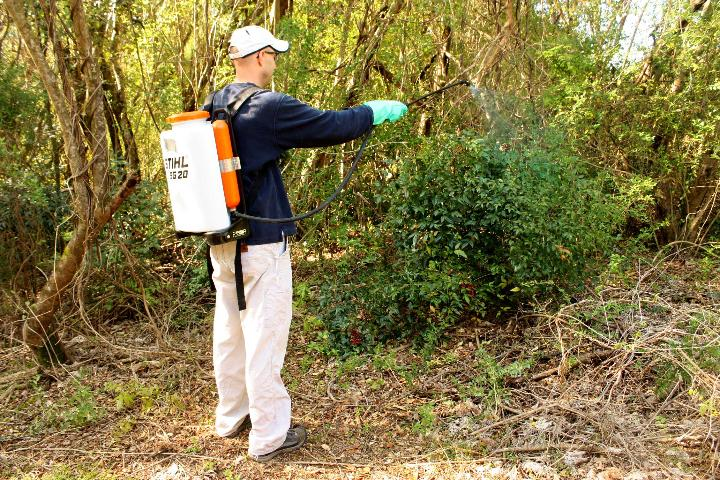 Figure 1. Foliar application with a backpack sprayer.