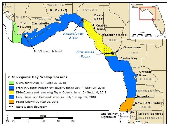 Figure 1.2018 regional bay scallop seasons.