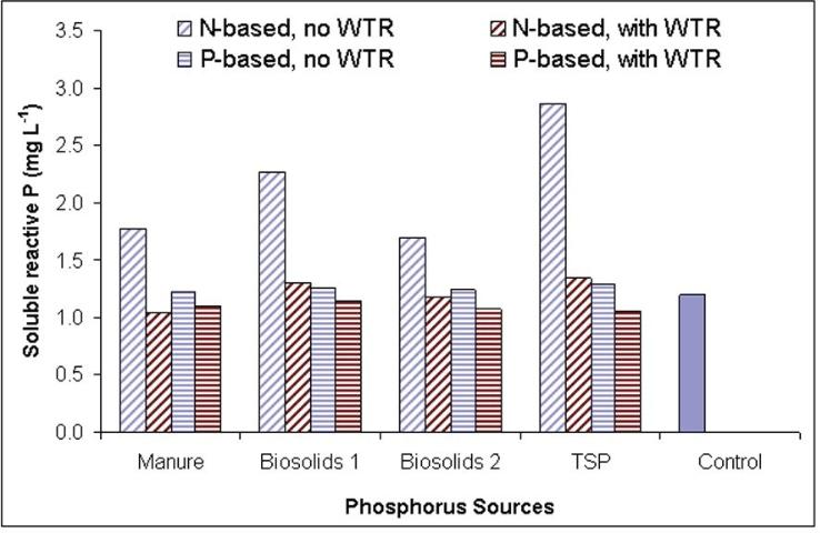 Figure 2. Effects of P sources (applied at N-based-, and P-based rates) and WTR amendment (10 tons/acre) on the soluble phosphorus concentrations of shallow (~0.9 m) groundwater samples obtained from a field study.