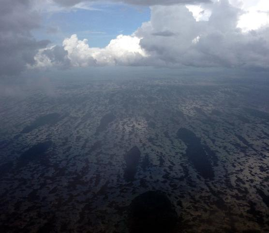 Figure 4.Everglades, a view from a plane (Credit: Tatiana Borisova)