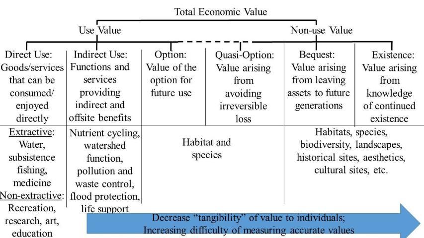 Figure 1.Examples of ecosystem services and their total economic value {Sources: Scottish Government (2004) and Boateng (2010)]