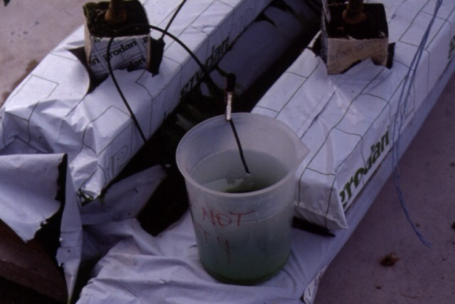 Figure 25.Collecting nutrient solution in a bucket from an extra emitter to track solution delivery rate and amount.