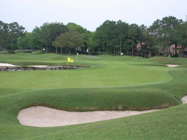 Figure 1.Hybrid bermudagrass used on a golf course.