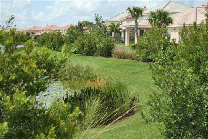 Figure 7.Planted buffers on stormwater ponds protect water quality.