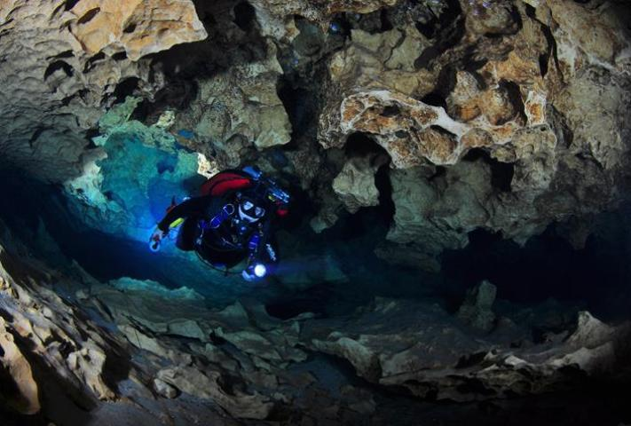 Figure 2.Cave diver in Peacock Springs.