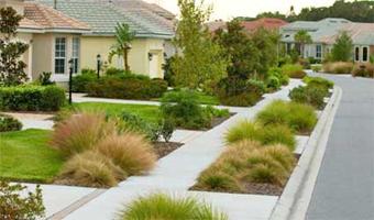 Figure 8.A simple plant palette of clump grasses reduces maintenance.