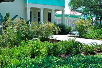 Figure 6.Neat plants in the foreground give the impression of a tidy yard.