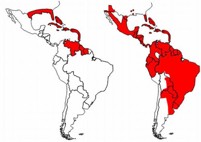 Figure 2. Reinfestation by the yellow fever mosquito, Aedes aegypti (Linnaeus), in the Americas, as of 2002. Left image shows reduction of range resulting from the eradication programs beginning in the mid-1990s. Right image shows reinfestation resulting from the end of the eradication programs.