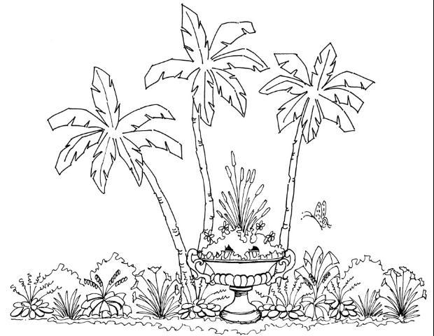 الشكل 15. التأكيد عن طريق عزل المواد النباتية في حاوية.