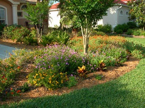 Figure 9.A Florida-Friendly landscape with more flowering plants will attract more wildlife.