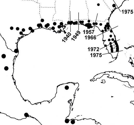 Figure 4. Pattern of migration of Plecia nearctica from Central America to the southeastern US.