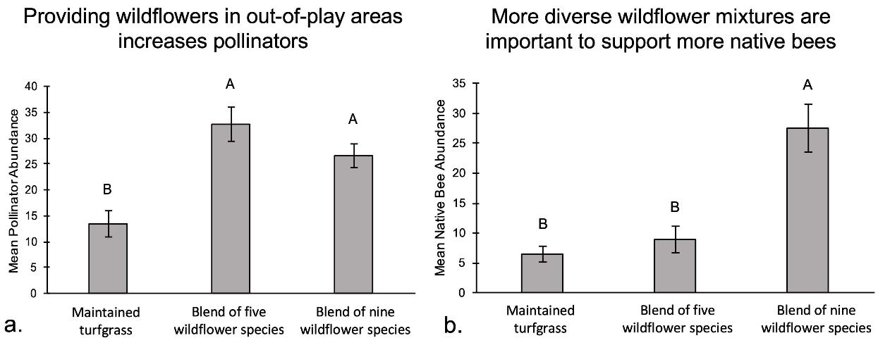 Figure 3.Average abundance of (a) general insect pollinators and (b) native bees visiting out-of-play turfgrass (control) and wildflower plots (low- and high-diversity mixes) May through September 2017.