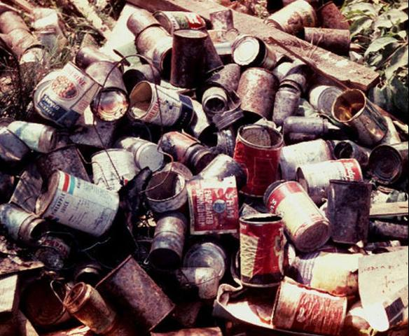 Figure 15. Mosquitoes can breed in tin cans in open dumps or around the yard.