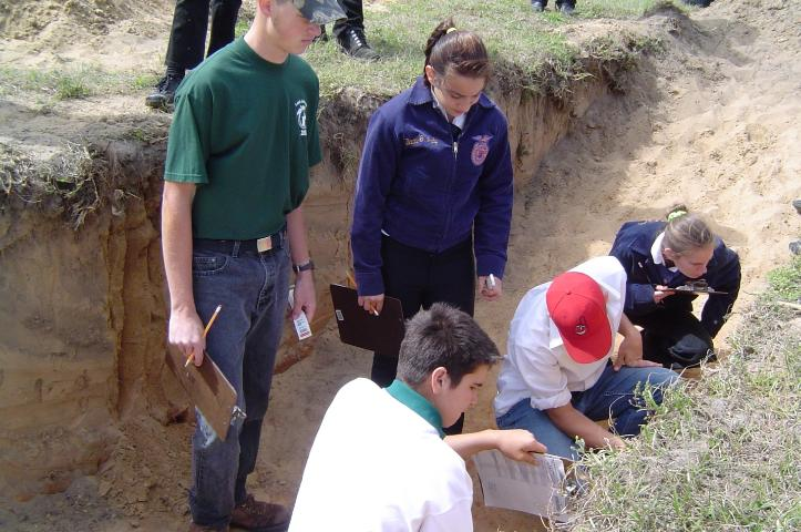 Figure 1.Florida 4-H and FFA students observe characteristics of soil profiles during the Florida 4-H/FFA Land Judging Contest.