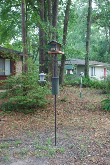 Figure 8.A baffle should help keep squirrels away from your feeders.