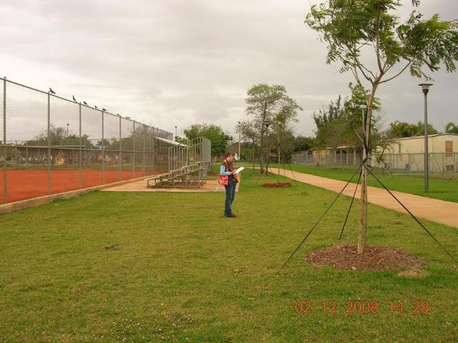 Figure 1.A representative school site that is dominated by turfgrass in Miami-Dade.