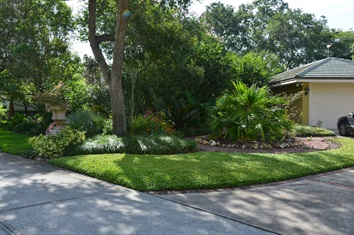 Figure 4.Turf strips along driveways or walkways give the impression of more turf.