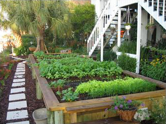 Figure 2. Raised beds can be elaborate and esthetically pleasing.