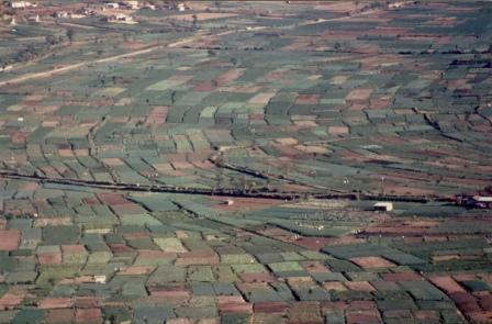 Figure 5.El valle de Almolonga, Guatemala, en donde muchos cultivos hortícolas son producidos en pequeñas parcelas. La diversidad de cultivos puede reducir la acumulación de ciertas especies. Créditos: Hugh Smith