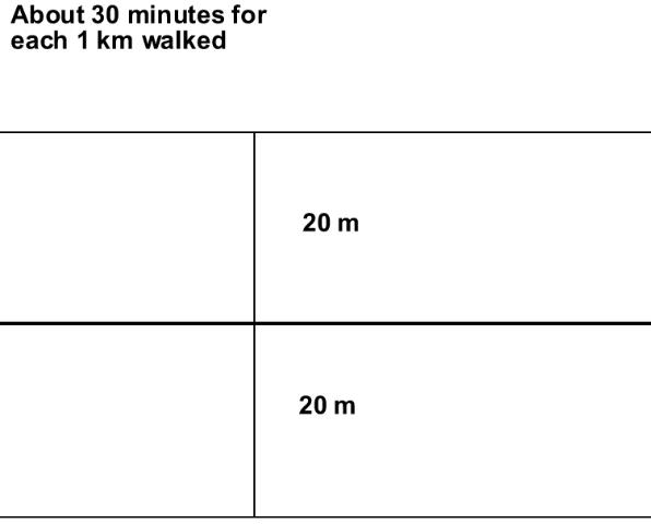 Figure 1.A typical transect survey where a person surveys birds within a 20 meter (m=meter) band on either side of a route. A person counts all the birds seen or heard within a 30 minute period for a 1km route.