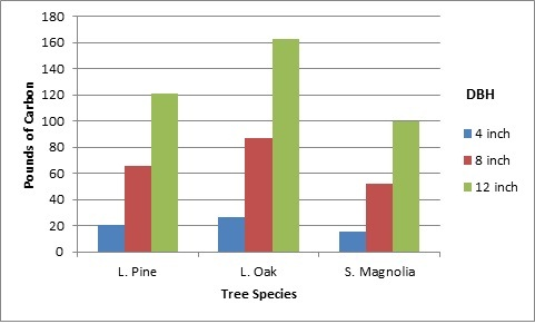 Figure 3.The amount of carbon emissions avoided by one tree, expressed in pounds per year based on tree species and diameter at breast height (DBH) for a single residence area in Gainesville, Florida. Calculations provided by i-Tree Design Beta Calculator http://www.itreetools.org/design.php