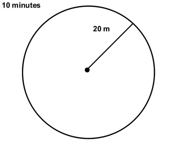 Figure 1.A typical 20 m (m=meter) radius point count where one person counts all the birds seen or heard within a 10 minute period.