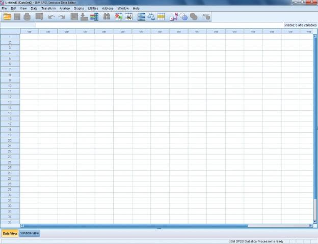 Figure 1. An SPSS spreadsheet.