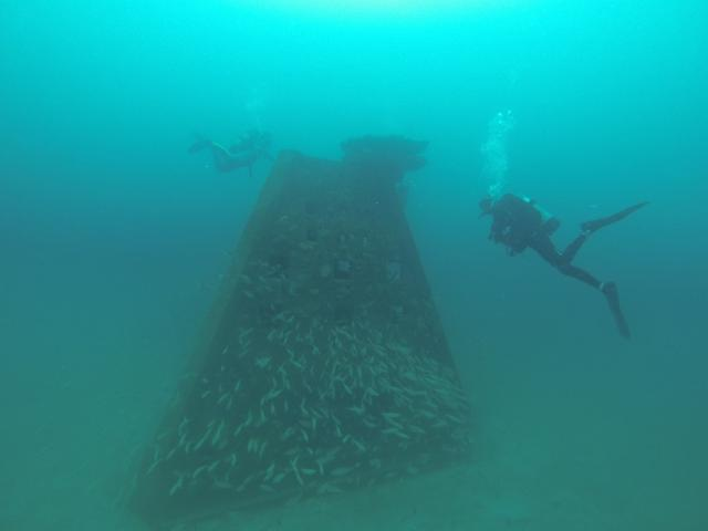 Figure 1. Artificial reefs are popular with fish and people.