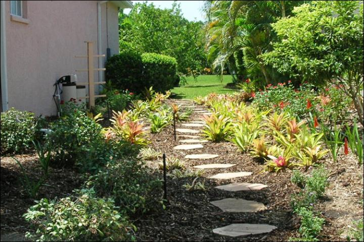 Figure 13.AFTER Florida-Friendly landscape renovation -- August 2009. The new landscape includes large beds with a variety of plants and a stone walkway, which gives form to the plant beds. The trellis will support a Coral Honeysuckle vine to hide the utilities.