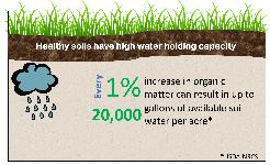 1d4e4762d04 Figure 1. Healthy soils with high organic matter will equate to higher water  holding capacity.