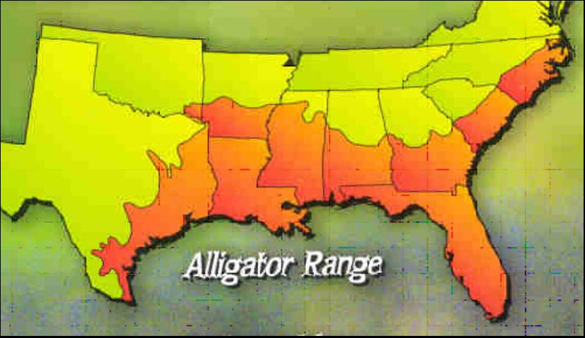 Figure 2.The range of the American alligator (where they occur) in the southeastern United States (see orange area, or darker shading, on map).