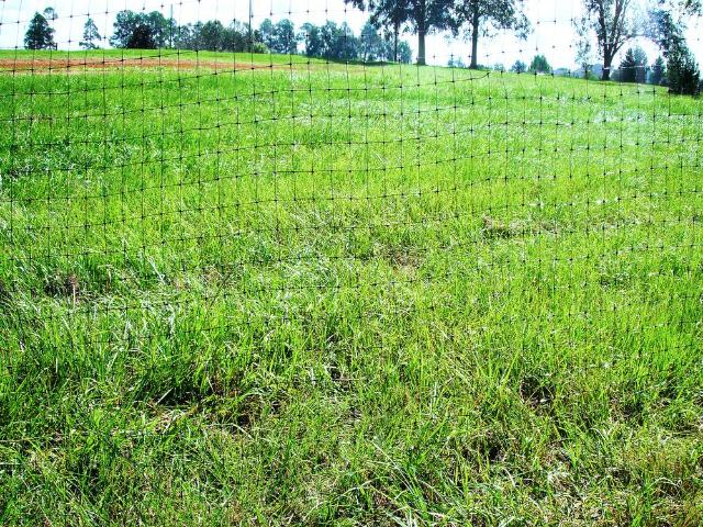 Figure 2.Flexible deer fencing can create an inexpensive, temporary barrier.