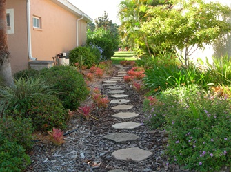 Figure 11.Small shrubs and ground cover recommended for the side yard.