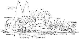 Cir536 Mg086 Basic Principles Of Landscape Design