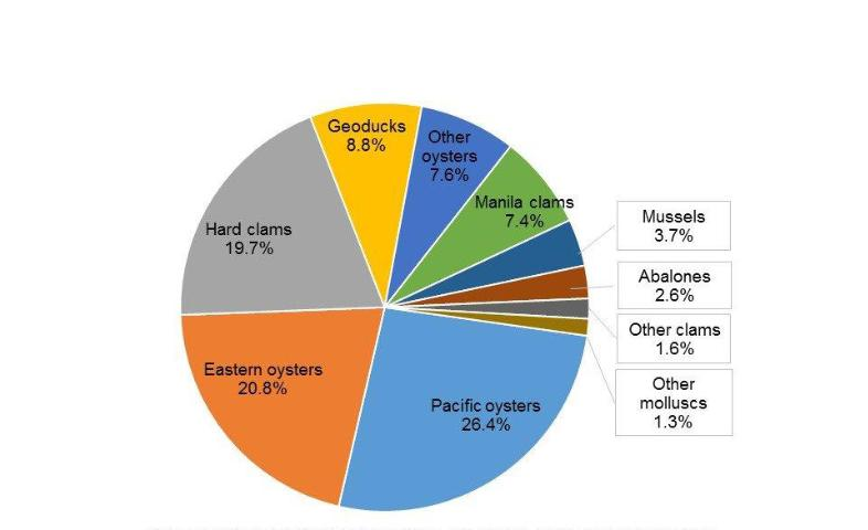 Figure 4.The proportion of aquaculture sales value for the major molluscan species groups in the United States in 2013.