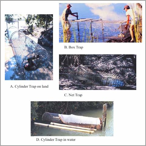 Figure 3. Various types of cage and net traps used for capturing crocodilians.