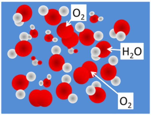 Figure 1. Molecular view of dissolved oxygen occupying spaces between water molecules.