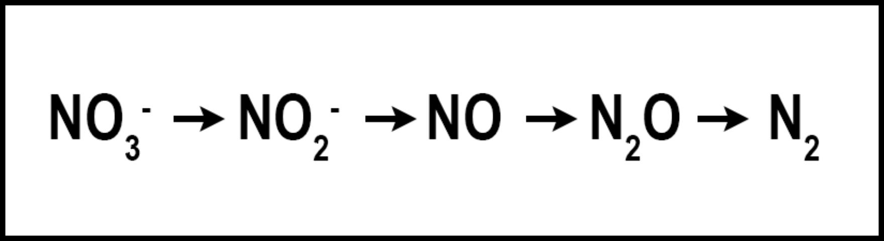 Figure 3. Denitrification - NO3-N is subject to reduction by soil microbes, leading to N2.