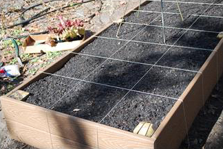 Figure 3. A raised bed using synthetic wood is more expensive than ACQ treated lumber but will last longer.